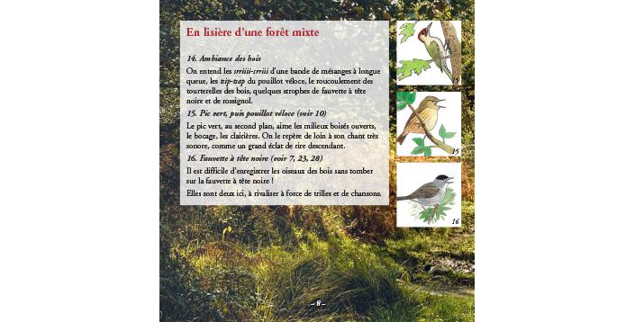 Forêts v1 – extrait 2