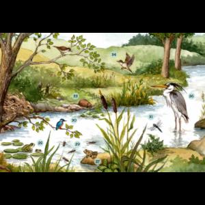 Rivière – extrait 9